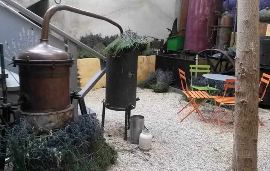 Distillation musée de la lavande