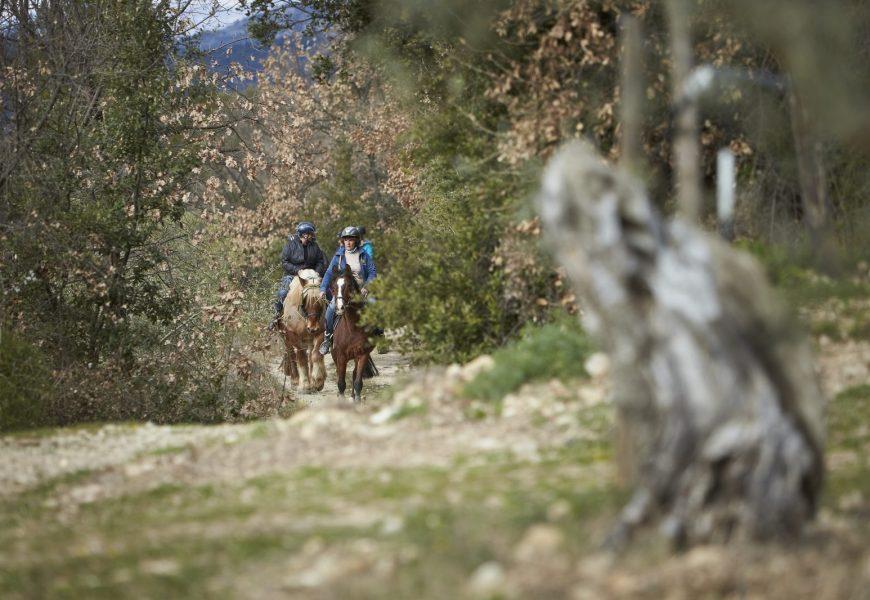 Séjour à cheval sur la Route Napoléon