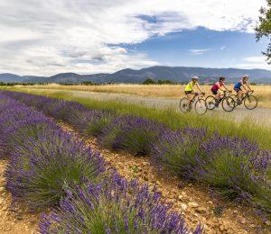 Le Tour Provence Alpes