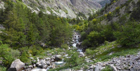 Estrop_rivière