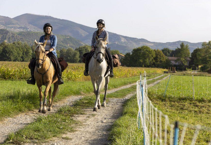 Route napoleon cheval