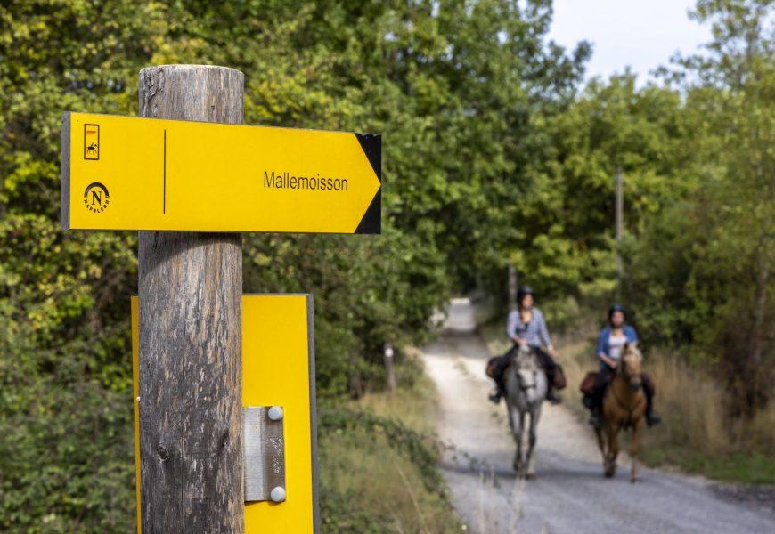 Route Napoléon en Haute Provence