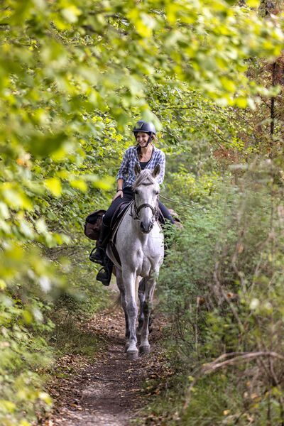2 jours sur la Route Napoléon à cheval