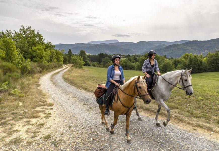 Grand Itinéraire equestre Haute Provence