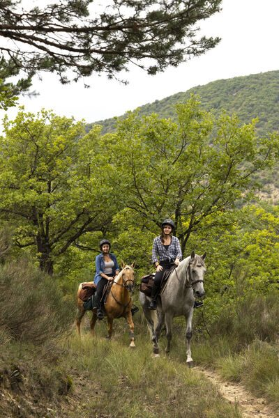 pension complete à cheval