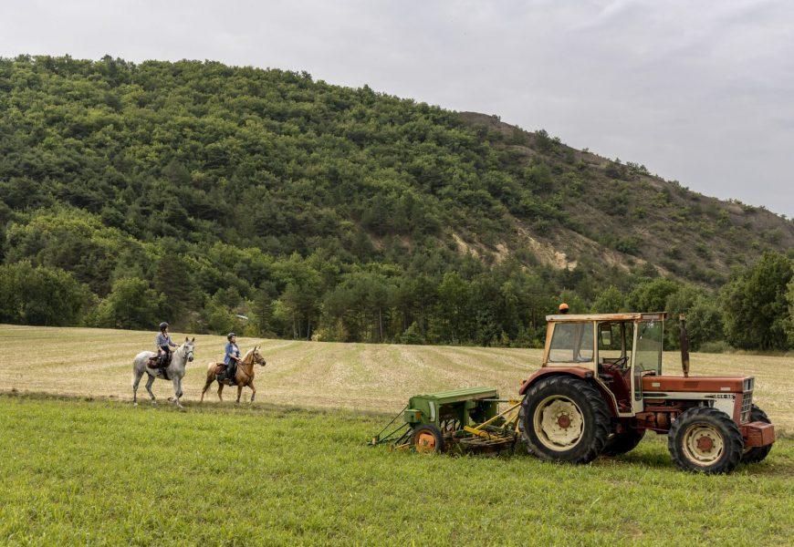2 jours de cheval en provence