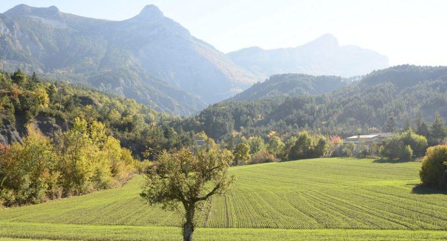 Location saisonnière Draix
