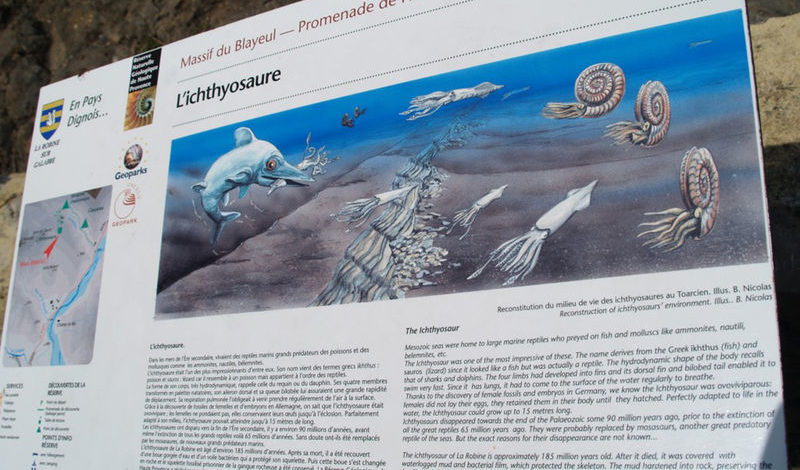 Ichtyosaure La Robine