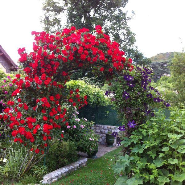 Location «Le Jardin Bleu» Digne les Bains
