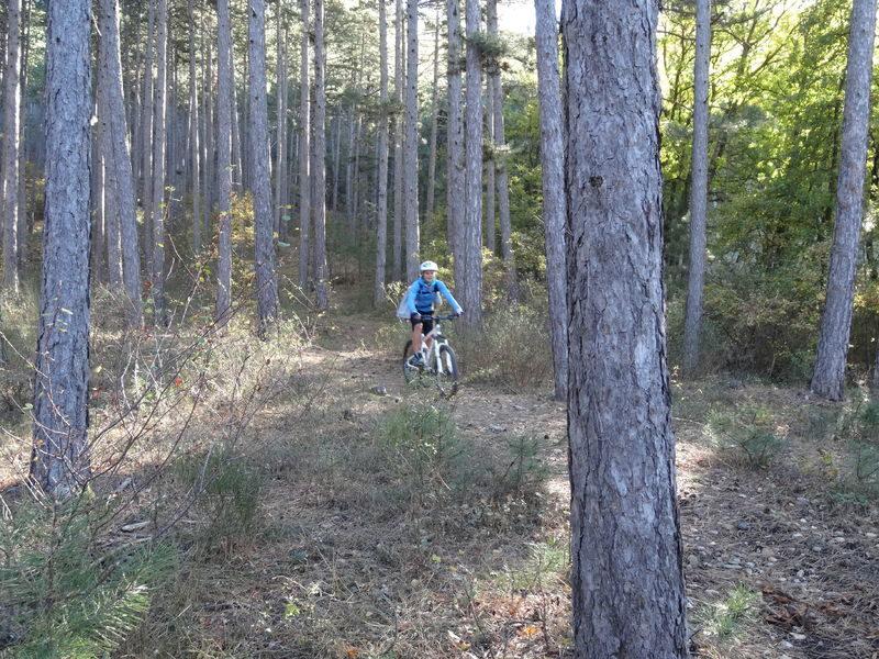 Cycliste dans la foret sur le circuit le Grognard numero 3