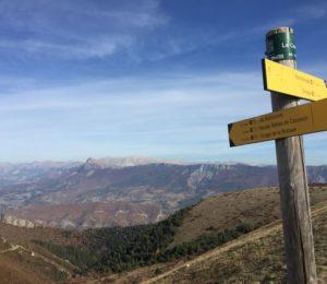 Le Cousson N°10 Digne-les-Bains