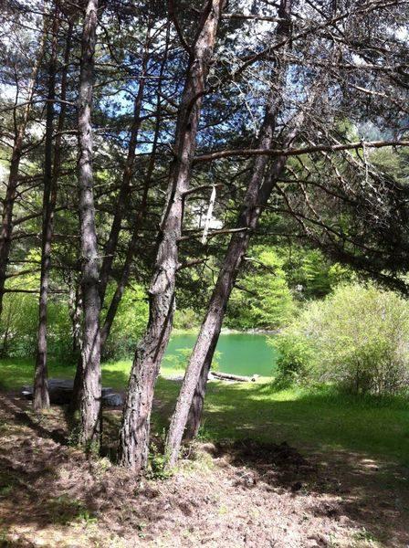 Le lac des Eaux Chaudes N°19 Prads-Haute-Bléone