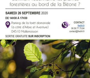 Affiche balade forestière FNE 04